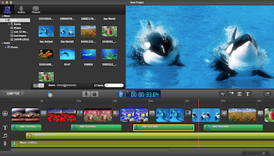 Photo Movie + DVD Slideshow Pro | David Team